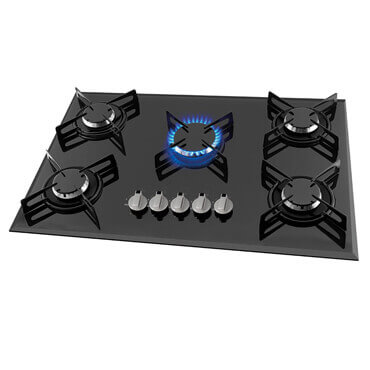Assistencia GE Monogram cooktop